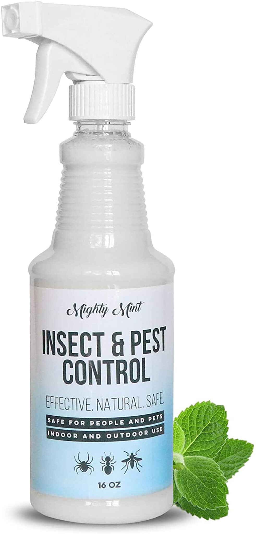 Mint Insect repellent