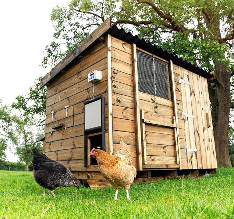 Waterproof Automatic Chicken Coop Door Opener review
