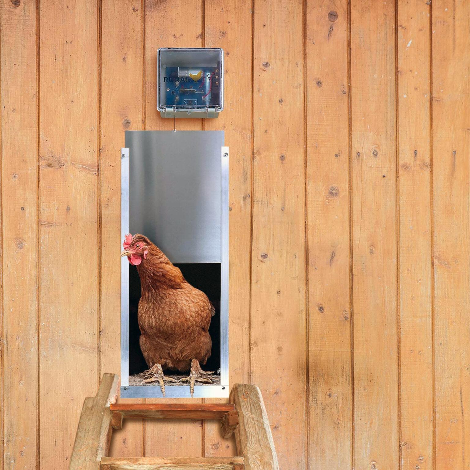 Electronic Chicken Coop Door review