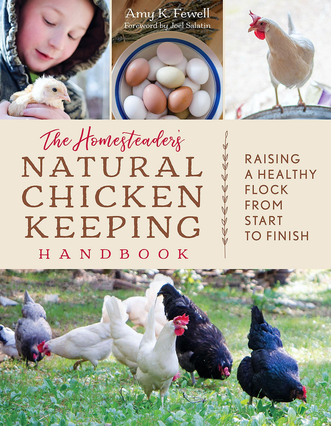 Books on chickens for kids