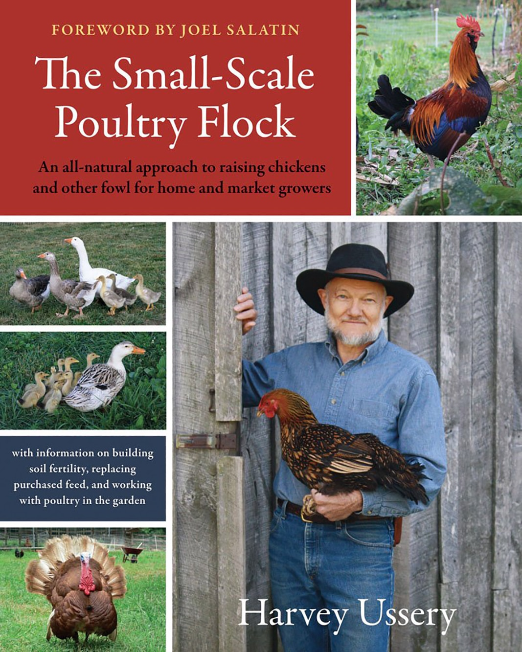 The Small-Scale Poultry Flock review
